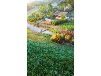 王金革(一级画家)《花香遍野》 2017