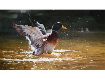 黄哲明(一级画家)《戏水》2018