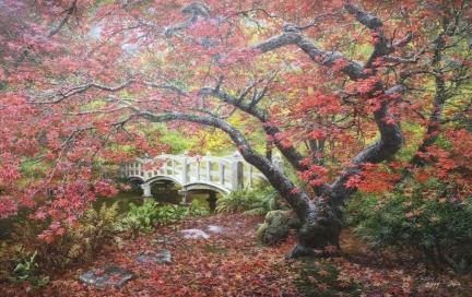 福建金明国(一级画家)《霜叶红于二月花》 115x74